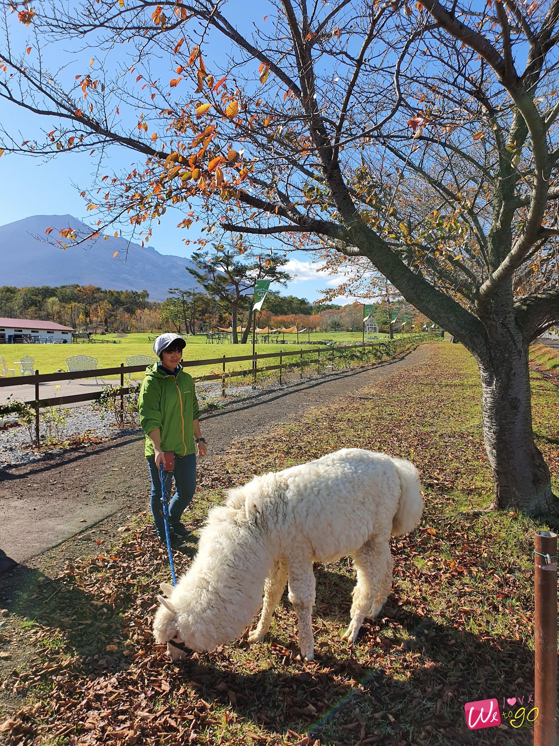 Hachimantai Iwate 48