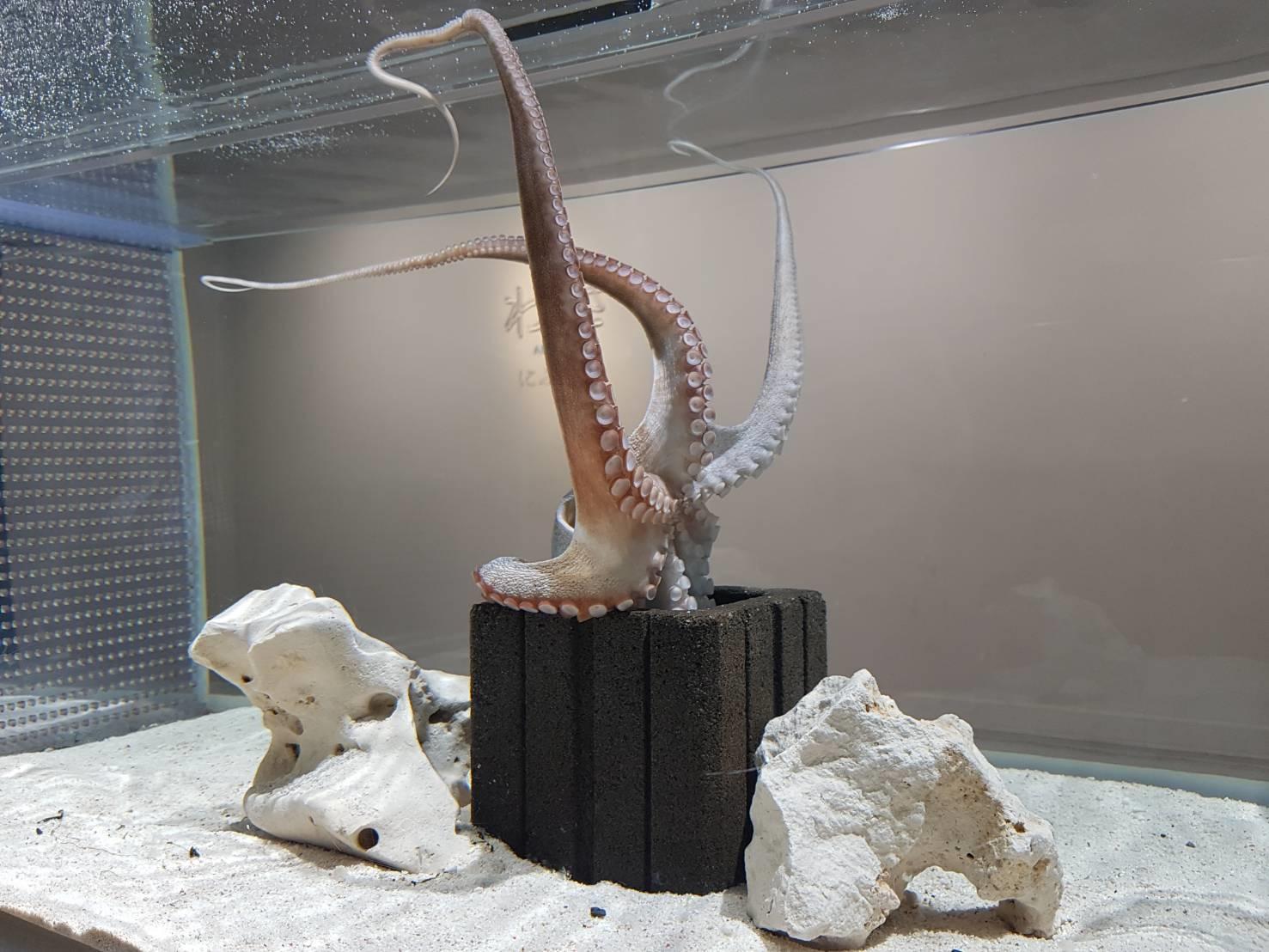 19. พิพิธภัณฑ์ Nifre 200213 0002