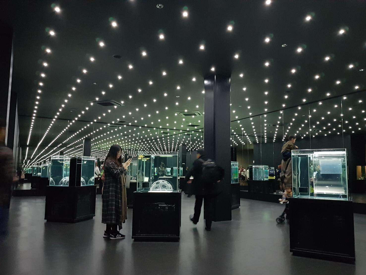 19. พิพิธภัณฑ์ Nifre 200213 0003