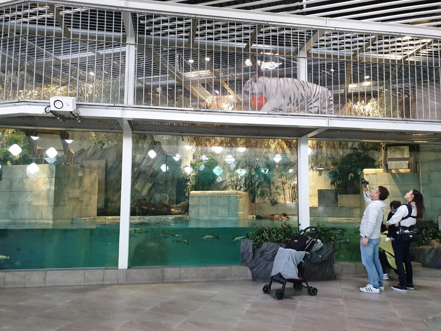 19. พิพิธภัณฑ์ Nifre 200213 0007