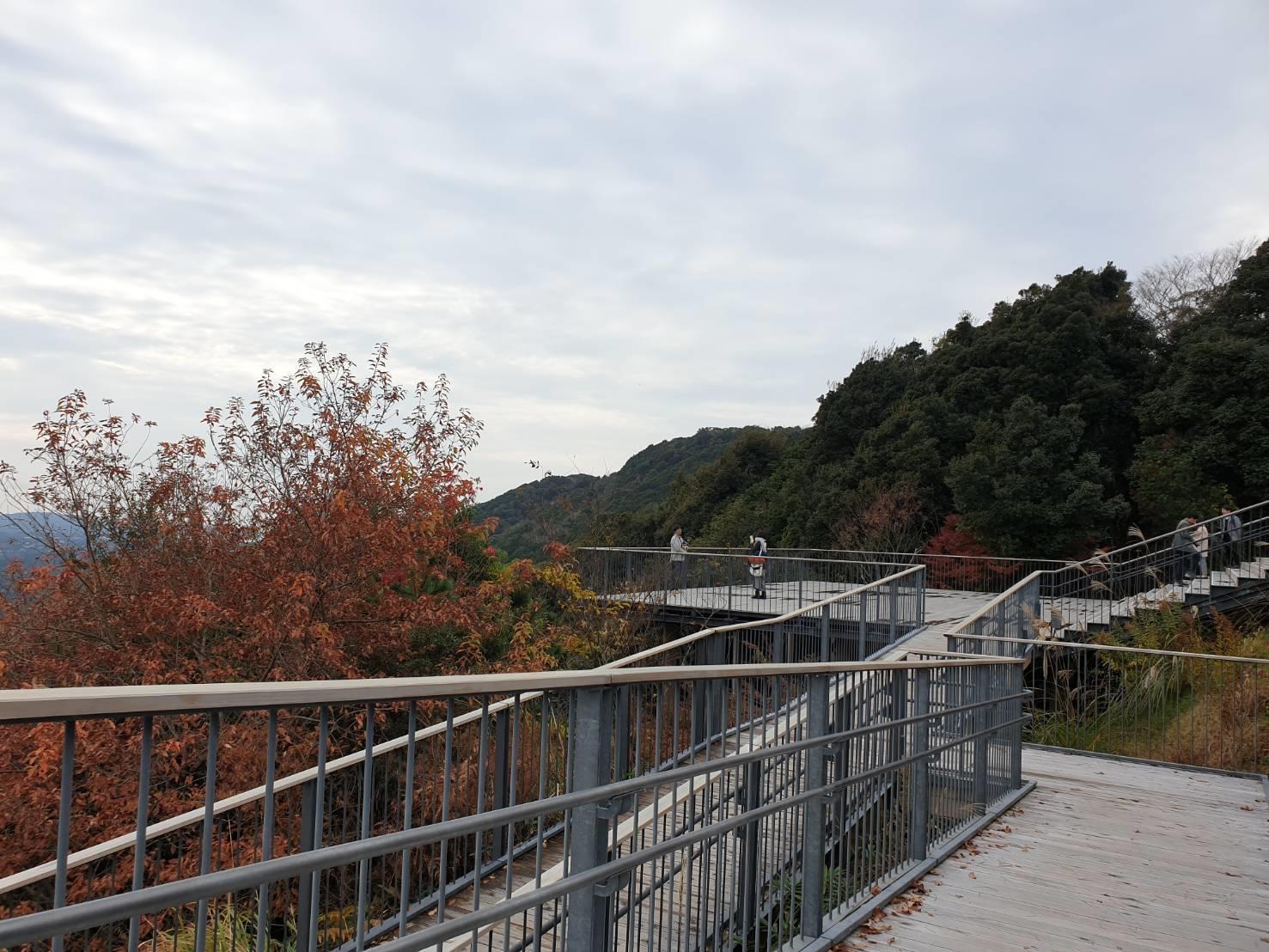 4. Yokoyama Observat 200211 0005