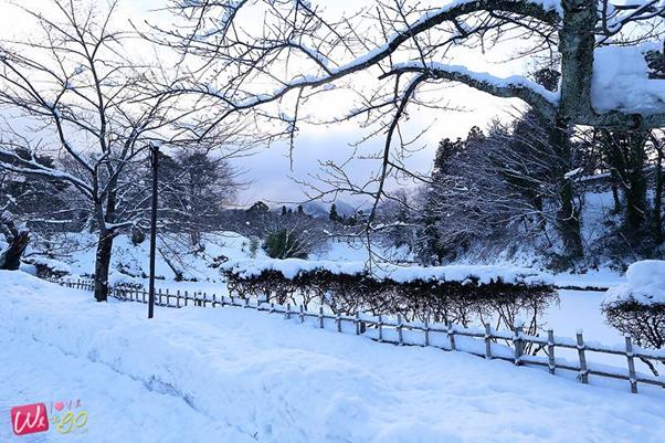 enjoy winter in japan 08