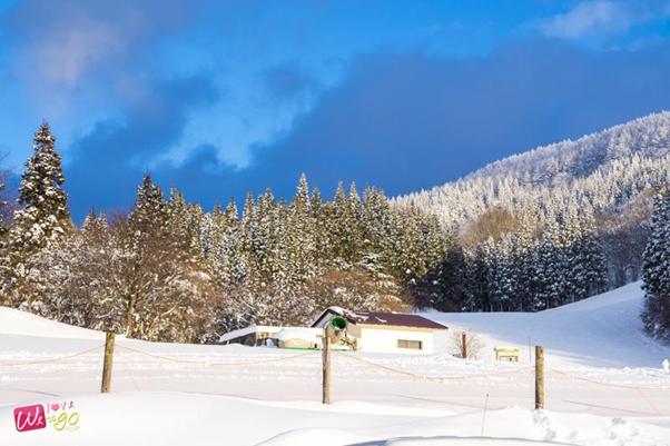 enjoy winter in japan 15