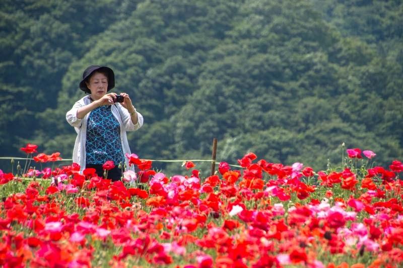 why tour in saitama ep2 24