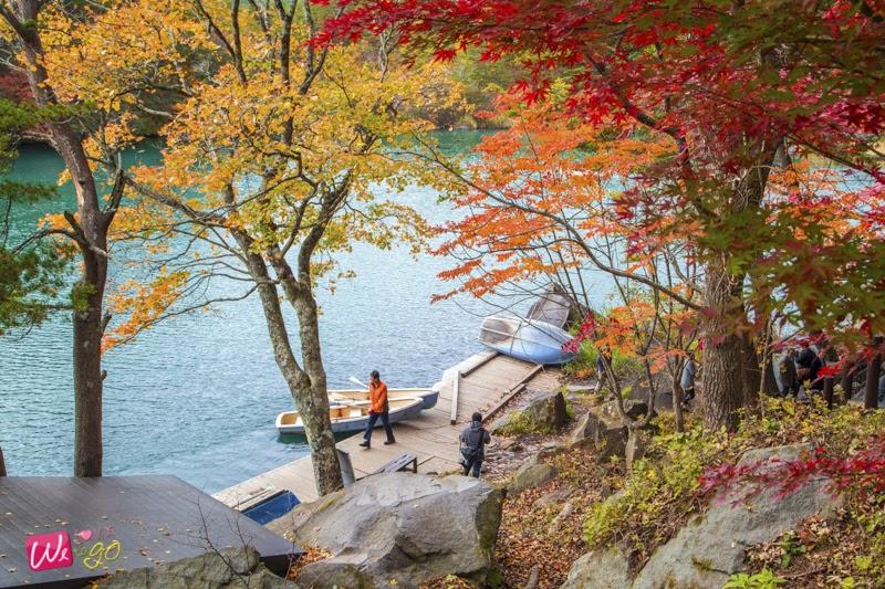 fukushima autumn 02