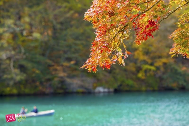 fukushima autumn 04