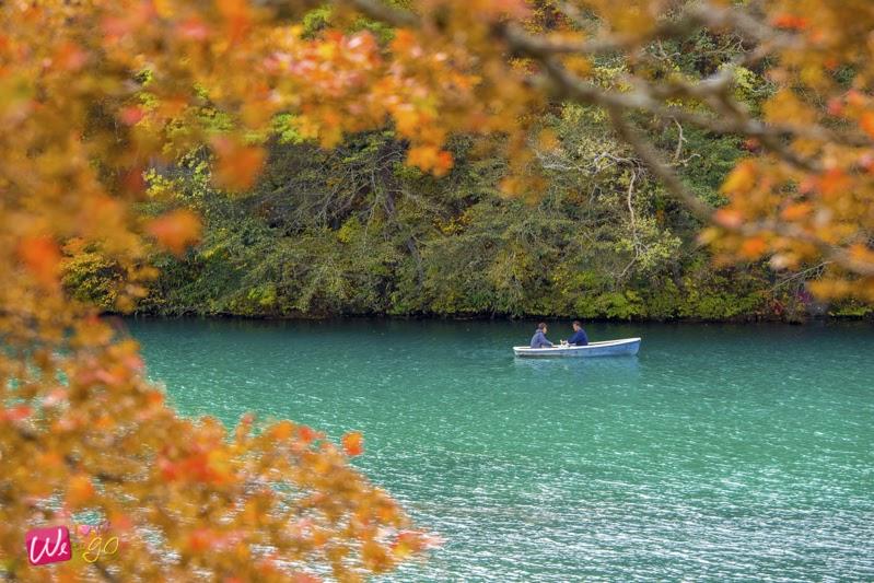 fukushima autumn 05