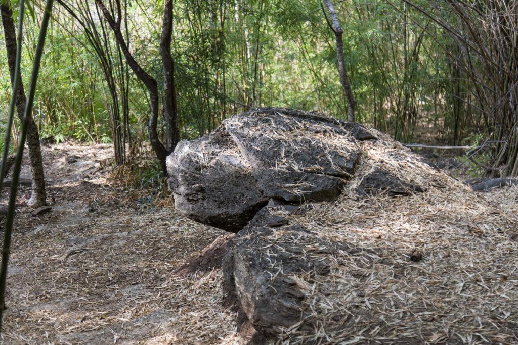 สวนหินพุหางนาค 2