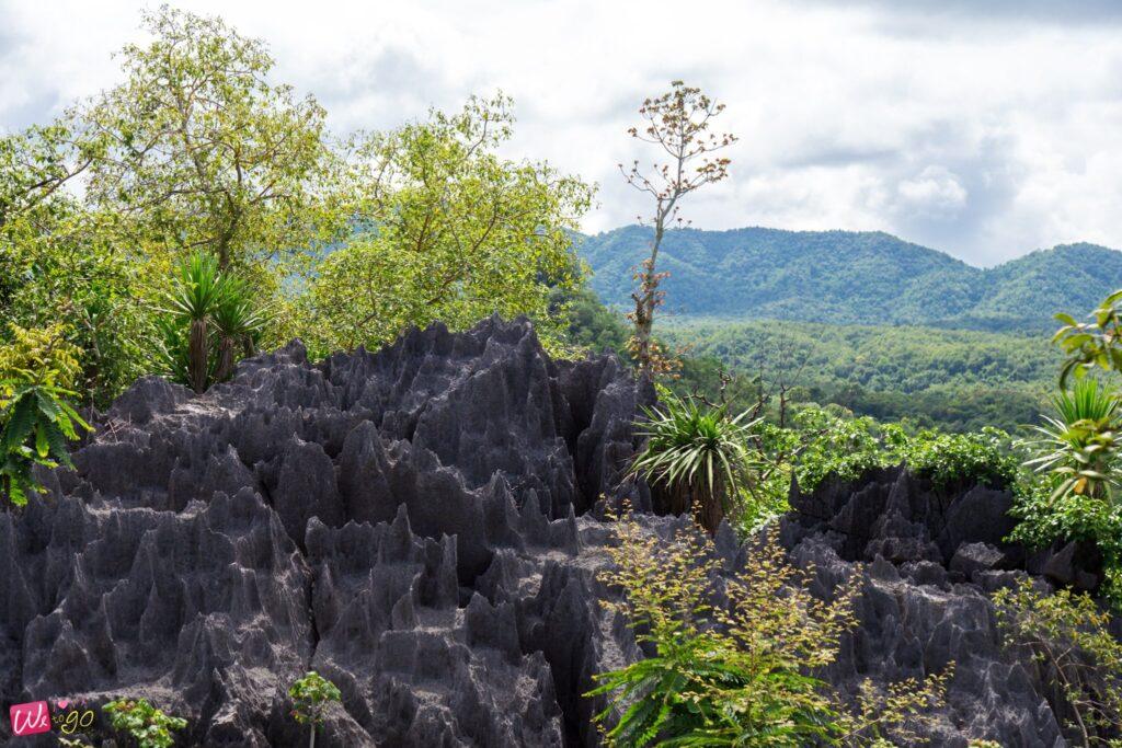 ภูเขาหินปะการัง อช.ผากลอง จ.แพร่1
