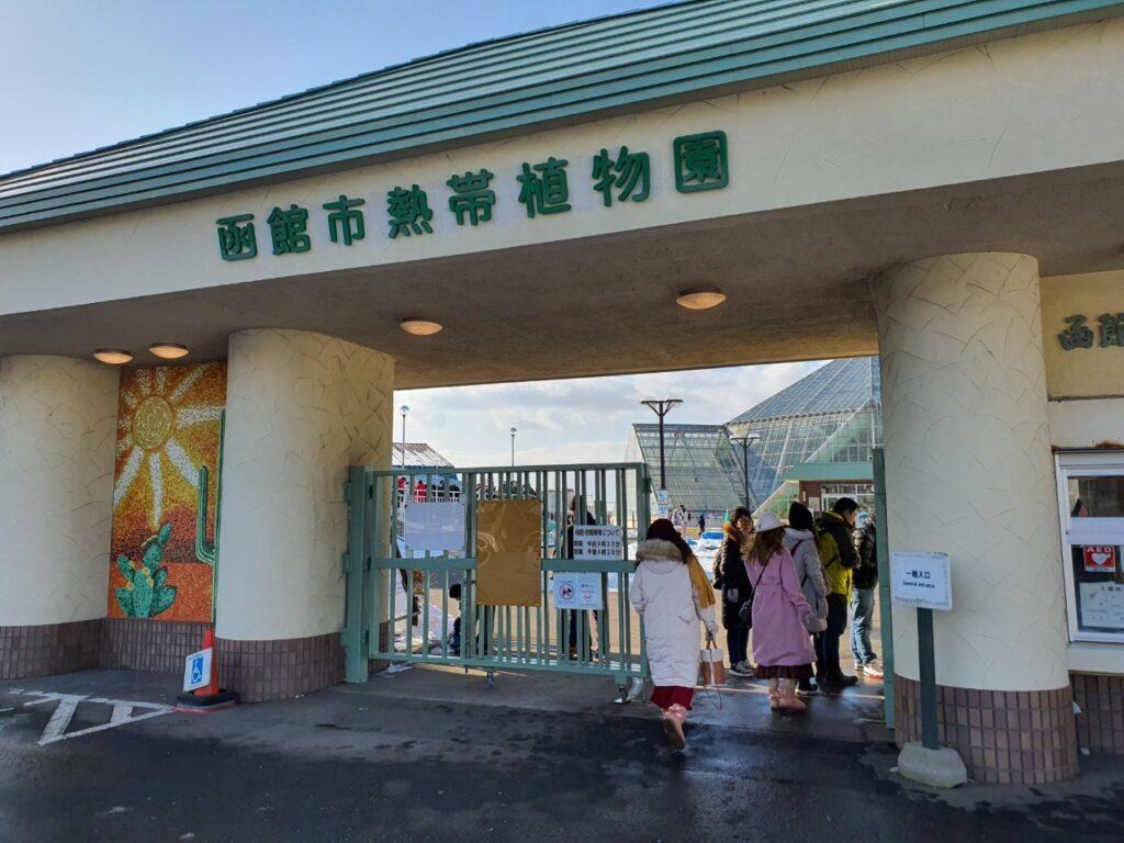Snow Monkey Hakodate 17