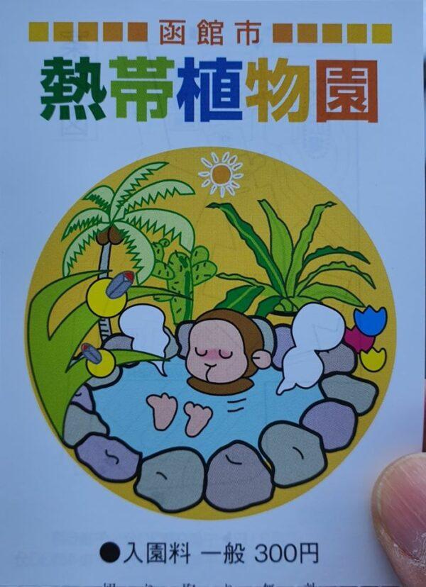 Snow Monkey Hakodate 18 600x828 1